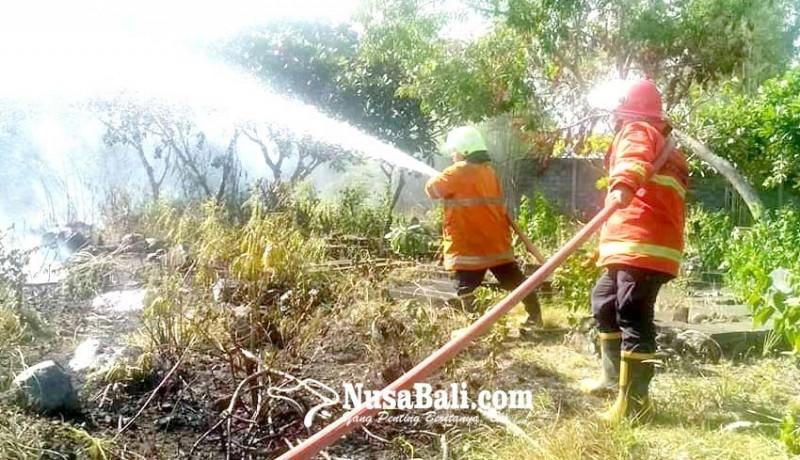 www.nusabali.com-setra-yeh-miik-terbakar