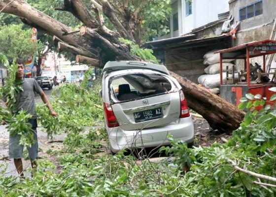 Nusabali.com - bencana-angin-kencang-di-kediri