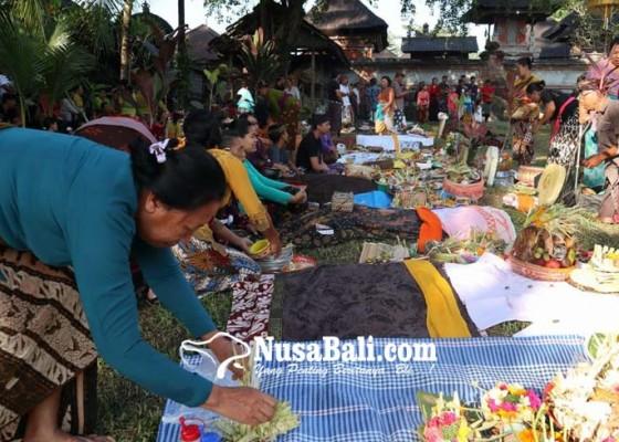 Nusabali.com - krama-ramai-ramai-mamunjung-dan-magibung-di-setra