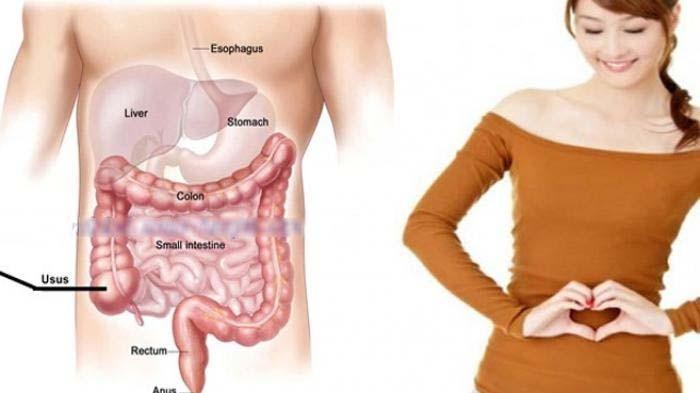 www.nusabali.com-kesehatan-menjaga-usus-selalu-prima