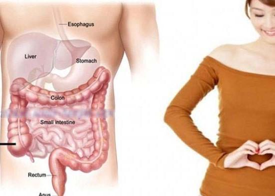 Nusabali.com - kesehatan-menjaga-usus-selalu-prima