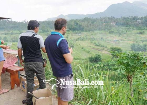 Nusabali.com - mimpi-bajatani-kembangkan-wisata-agro