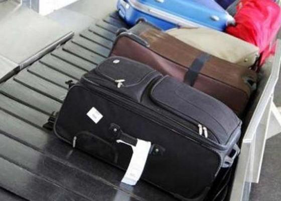 Nusabali.com - burung-kacer-rp-150-juta-hilang-di-bagasi-garuda