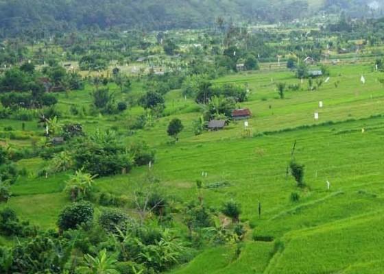 Nusabali.com - subak-berpeluang-rebut-dolar-turis