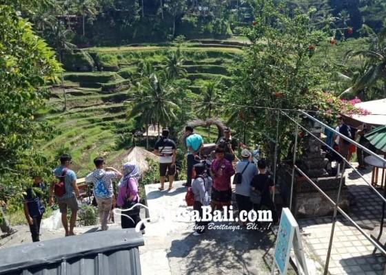 Nusabali.com - objek-wisata-ceking-makin-semrawut