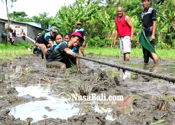 Nusabali.com - tarik-tambang-di-lumpur-menang-kalah-belepotan