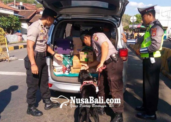 Nusabali.com - amankan-padangbai-polisi-kerahkan-anjing-pelacak