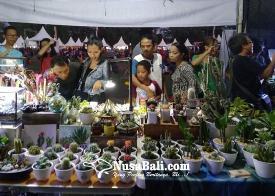Nusabali.com - berburu-tanaman-kaktus-dan-sekulen-di-denfest-2019