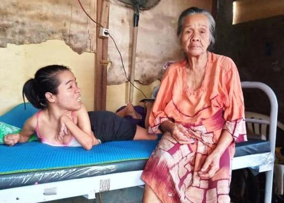 Nusabali.com - nenek-sukajadi-sang-penanggung-anak-disabilitas