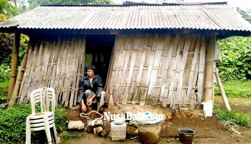 www.nusabali.com-teruna-lingsir-tinggal-di-gubuk-layaknya-kandang-sapi-dan-tanpa-lampu-penerang