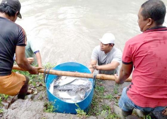 Nusabali.com - desa-bantas-diproyeksikan-jadi-desa-kawasan-buah-dan-ikan