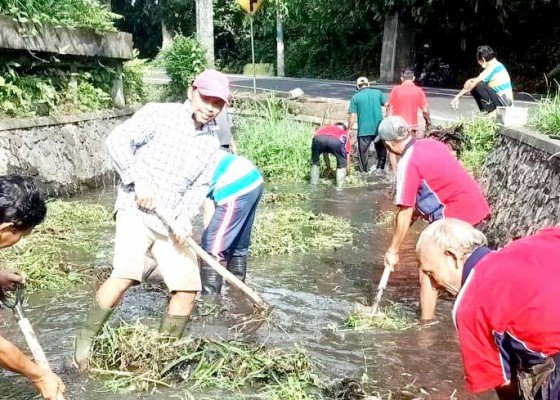 Nusabali.com - dinas-pupr-perkim-bersihkan-saluran-irigasi