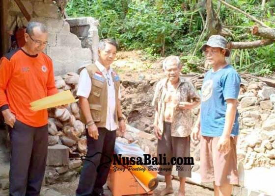 Nusabali.com - bpbd-bantu-6-korban-pohon-tumbang