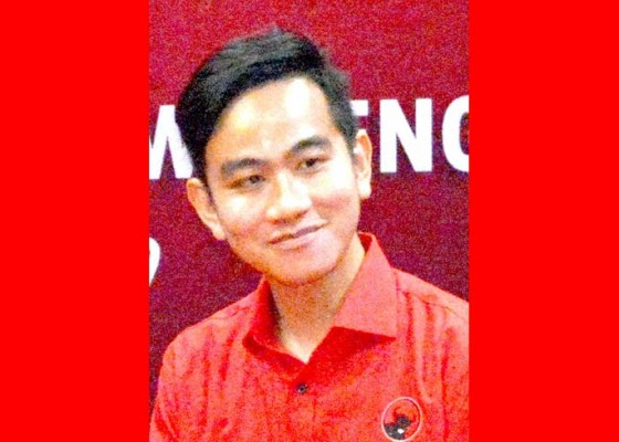 Nusabali.com - gibran-tak-diundang-rakernas-pdip