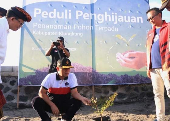 Nusabali.com - 1218-bibit-pohon-ditanam-di-pantai-lepang
