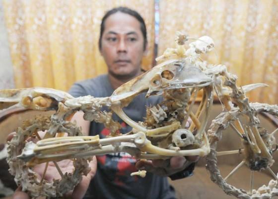 Nusabali.com - kerajinan-limbah-tulang-ayam
