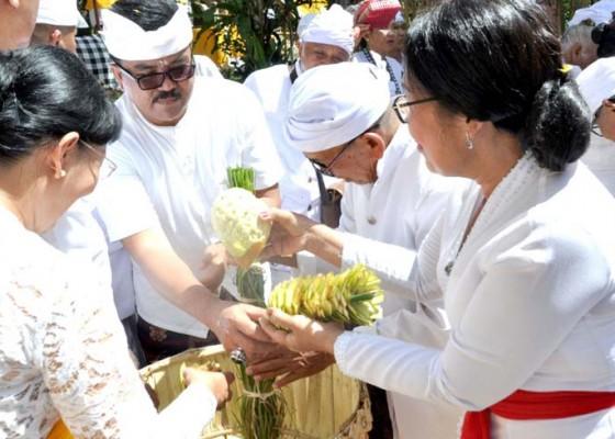 Nusabali.com - digelar-ritual-ngadegan-pamemben-bagia-pula-kerti