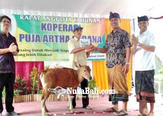 Nusabali.com - rat-koperasi-berhadiah-godel