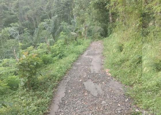 Nusabali.com - jalan-subaya-petirtaan-rusak-berat