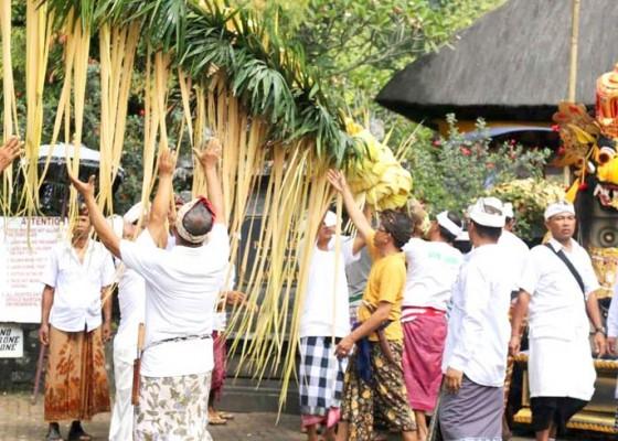 Nusabali.com - melaspas-pamemben-bagia-pula-kerti-karya-pangurip-gumi-di-pura-luhur-batukau