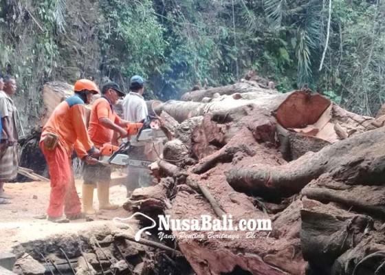 Nusabali.com - bak-penampungan-air-rusak-tertimpa-pohon-tumbang