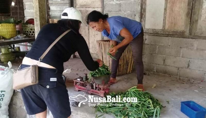 www.nusabali.com-petani-vanili-sumringah-harga-tembus-rp-200-ribukg