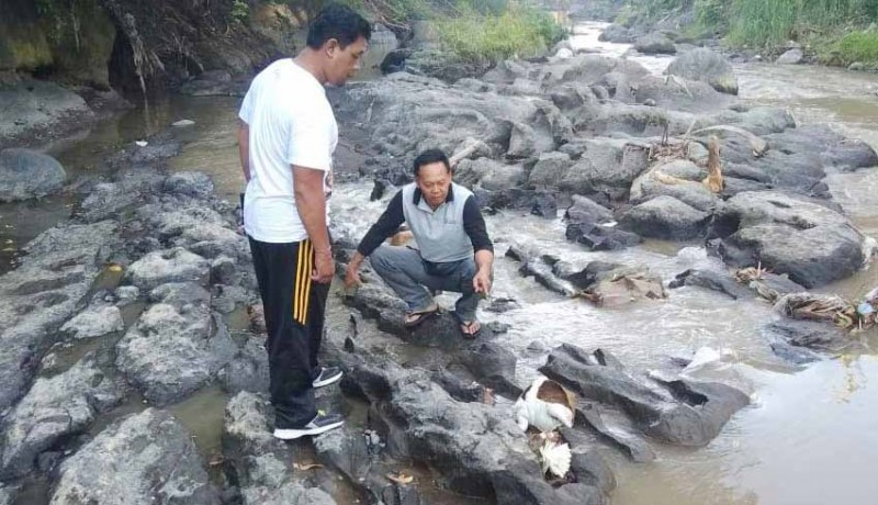 www.nusabali.com-orok-perempuan-tanpa-kepala-ditemukan-di-sungai-ayung