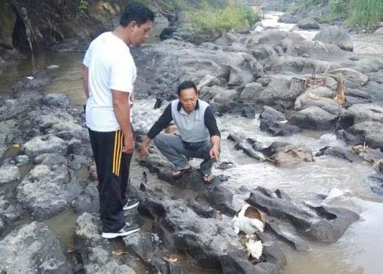 Nusabali.com - orok-perempuan-tanpa-kepala-ditemukan-di-sungai-ayung