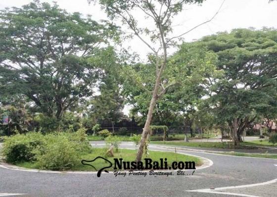 Nusabali.com - jadi-pusat-tanaman-upakara-dan-usada