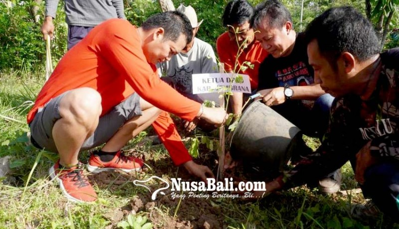 www.nusabali.com-tanam-10000-pohon-wabup-kembang-ajak-masyarakat-jaga-kelestarian-hutan