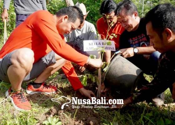Nusabali.com - tanam-10000-pohon-wabup-kembang-ajak-masyarakat-jaga-kelestarian-hutan