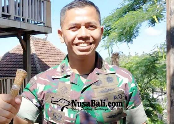 Nusabali.com - program-upsus-tahun-2019-di-tabanan-capai-98-persen