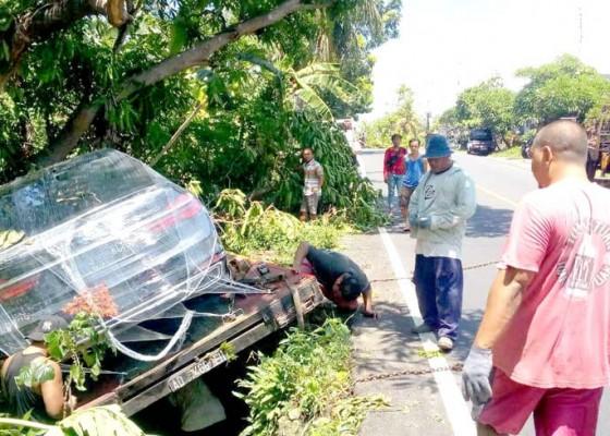 Nusabali.com - sopir-ngantuk-kendaraan-angkut-sedan-bmw-baru-nyungsep