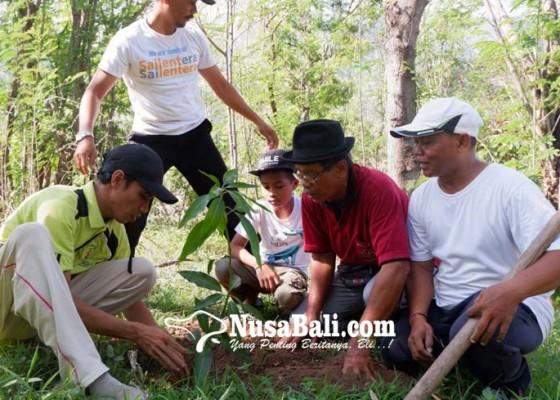 Nusabali.com - bukit-gondol-dihijaukan-dengan-ratusan-pohon