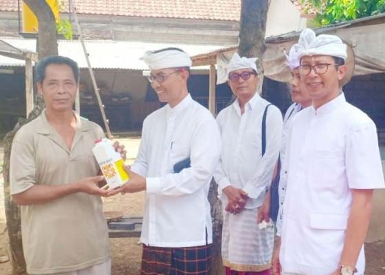 Nusabali.com - dinas-pertanian-dan-pangan-badung-minta-peternak-terapkan-biosekuriti