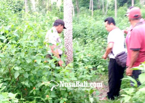 Nusabali.com - polisi-tunggu-hasil-tes-labforensik