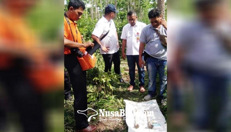 www.nusabali.com-lagi-ditemukan-tulang-belulang-di-pejarakan