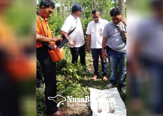 Nusabali.com - lagi-ditemukan-tulang-belulang-di-pejarakan