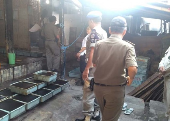 Nusabali.com - pengusaha-cincau-dan-peternak-babi-ditipiring