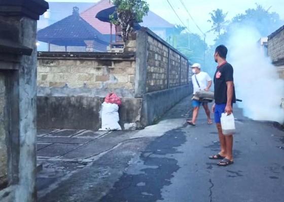 Nusabali.com - db-merebak-warga-swadaya-lakukan-fogging