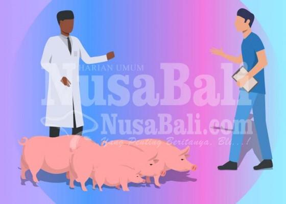 Nusabali.com - distan-imbau-masyarakat-cek-kesehatan-hewan-dan-daging-sebelum-disembelih