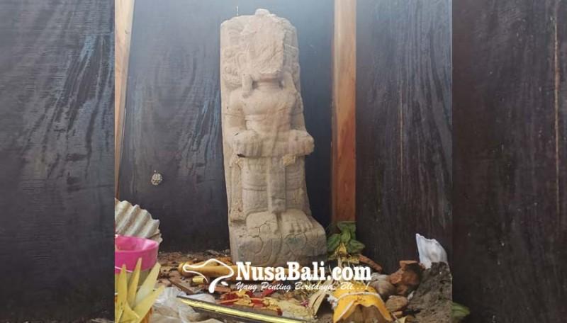 www.nusabali.com-tetap-utuh-berdiri-walau-ditimpa-pohon-kuanji-yang-berusia-ratusan-tahun