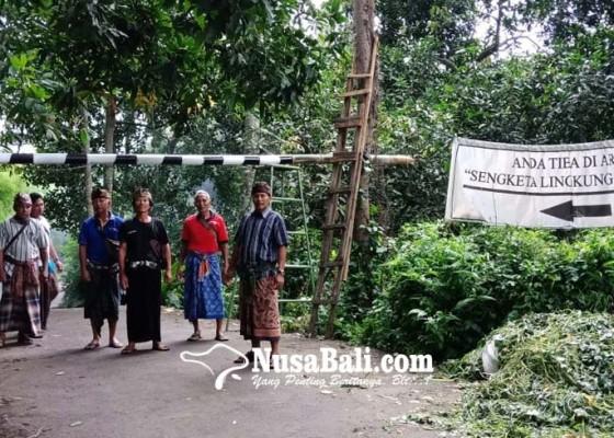 Nusabali.com - tuntut-rekomendasi-adat-dicabut-warga-bila-blokade-akses-usaha-peternakan-babi
