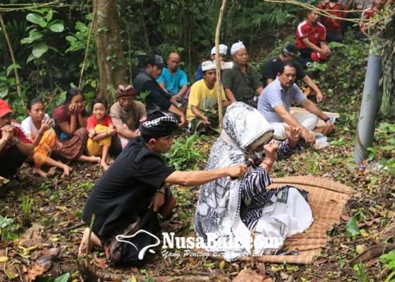 Nusabali.com - harus-lakukan-ritual-khusus-berkhasiat-untuk-pengobatan-penyakit-non-medis