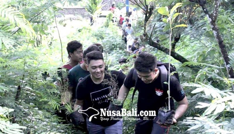 www.nusabali.com-pohon-aren-hijaukan-desa-panji