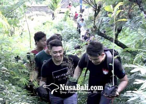 Nusabali.com - pohon-aren-hijaukan-desa-panji