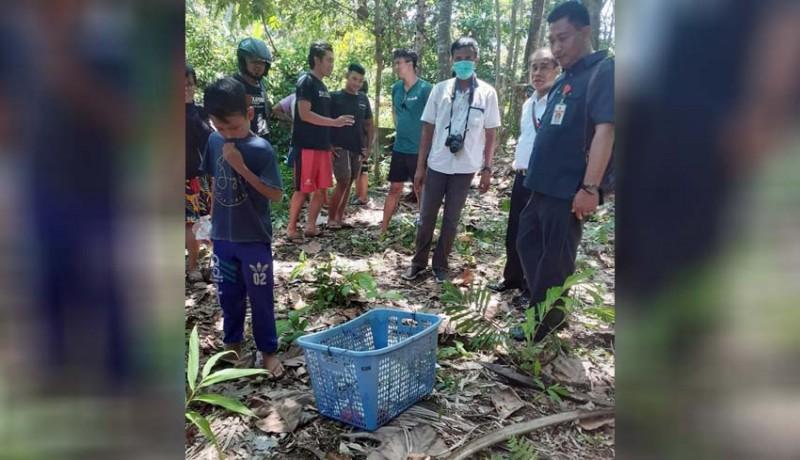 www.nusabali.com-pemancing-temukan-orok-membusuk-di-sungai
