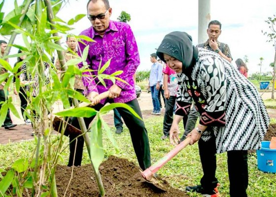 Nusabali.com - adi-wiryatama-boyong-400-pohon-bambu-ke-surabaya