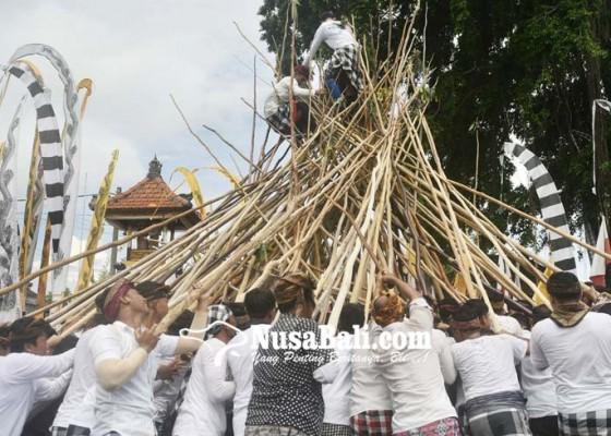 Nusabali.com - tradisi-makotek-meriahkan-hari-raya-kuningan-di-munggu