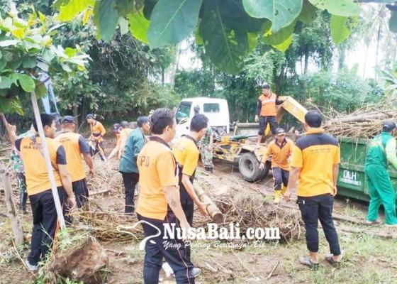 Nusabali.com - alat-berat-normalisasi-sungai-batu-pulu-dan-sungai-asangan